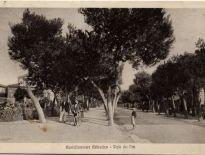 Castellammare Adriatico, Viale dei Pini oggi Viale Regina Margherita