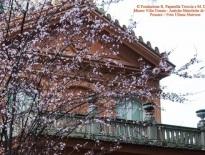 Villa Urania, foto di Uliana Marrone